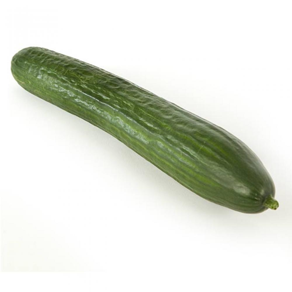 Fresh Whole Cucumber